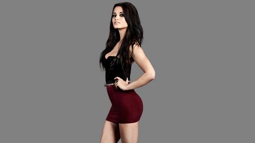 wwe divas fondo de pantalla possibly with bare legs, a leotard, and a cóctel, coctel dress called Paige