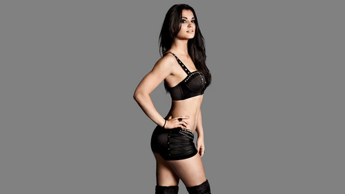 WWE Divas wallpaper probably containing a brassiere, attractiveness, and a lingerie entitled Paige