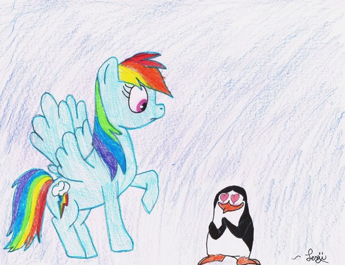 Private and Rainbow Dash XD