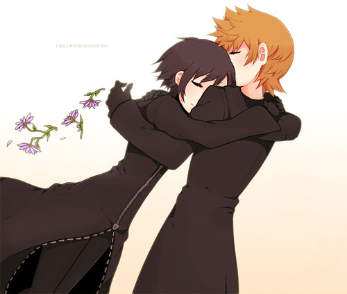 Kingdom Hearts Обои entitled Roxas and Xion