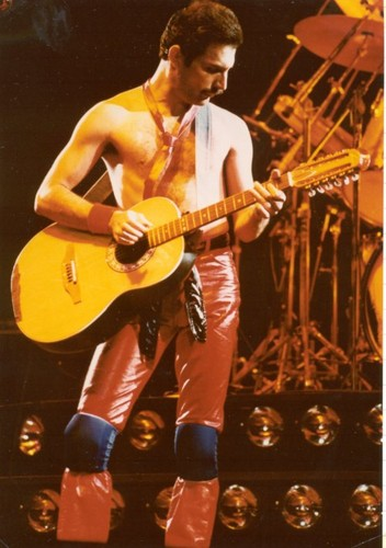 Freddie Mercury wallpaper containing a guitarist entitled Sexy :D