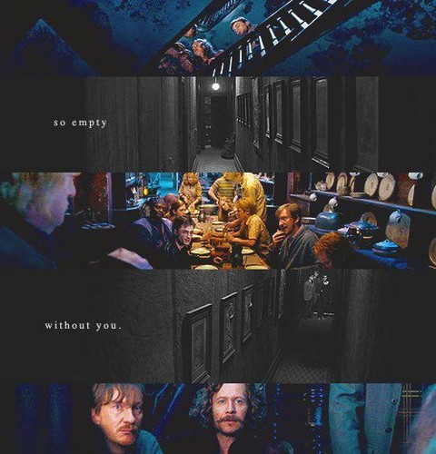 Sirius Black wallpaper containing a multiplex titled Sirius Black