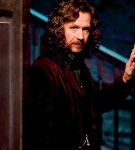 Sirius Black wallpaper possibly containing a revolving door titled Sirius Black