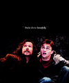 Sirius Black - sirius-black photo