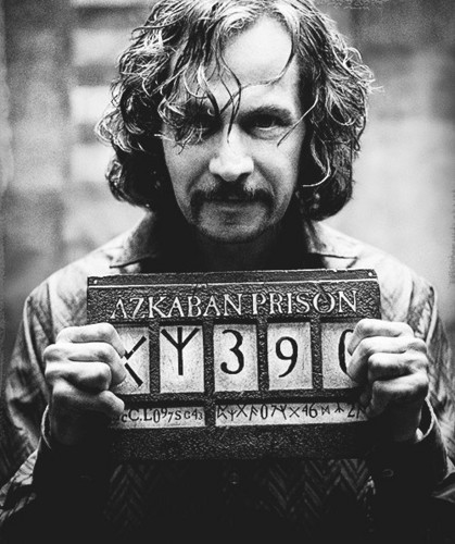 Sirius Black wolpeyper called Sirius Black