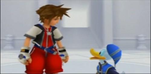 Sora and Donald