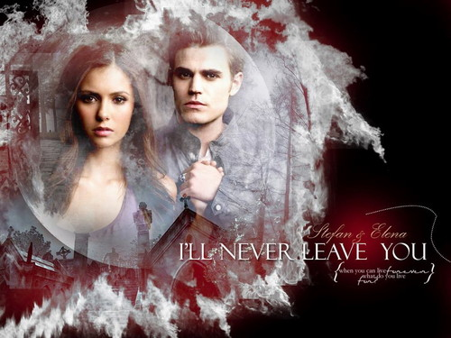 Vampire Diaries Hintergrund entitled Stefan & Elena