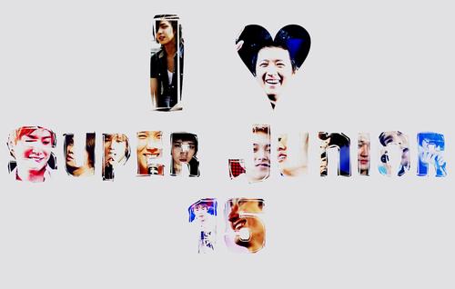 Super Junior 15