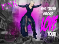 THE TRUTH ABOUT LOVE TOUR -NY City - pink fan art