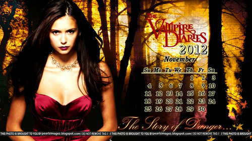 TVD Elena Themed Calenders(untagged Обои on the link provided in the discription and in the pic)