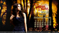 TVD Elena Themed Calenders(untagged images on the link provided in the discription and in the pic) - the-vampire-diaries-tv-show wallpaper