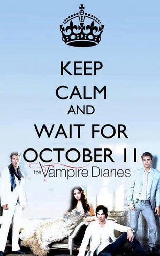 Celebrity Contests wallpaper called TVD