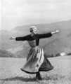 The sound of music - the-sound-of-music photo