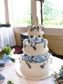 Weding Cake - victor-van-dort-and-victoria-everglot photo