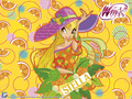 Winx girls - the-winx-club wallpaper