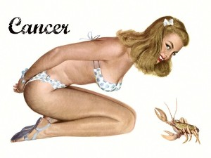 Pin Up Girls wallpaper containing skin called Zodiac Pin Up Girls