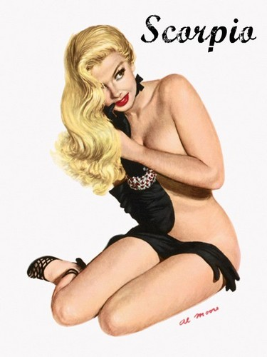 pin up girl wallpaper probably with a leotard, attractiveness, and a maillot titled Zodiac Pin Up Girls