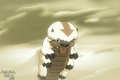 appa - avatar-the-last-airbender photo