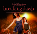 breaking dawn - breaking-dawn fan art