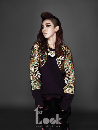 DARA 2NE1 hình nền possibly with an outerwear, a well dressed person, and a box áo, áo khoác titled dara 2NE1 1st look mag