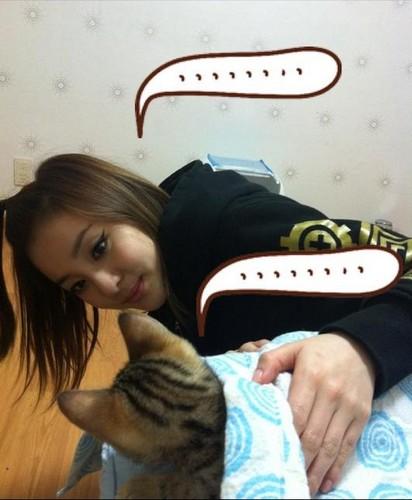 dara 2NE1 wwith dadoong
