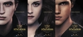 french poster part2 - twilight-series photo