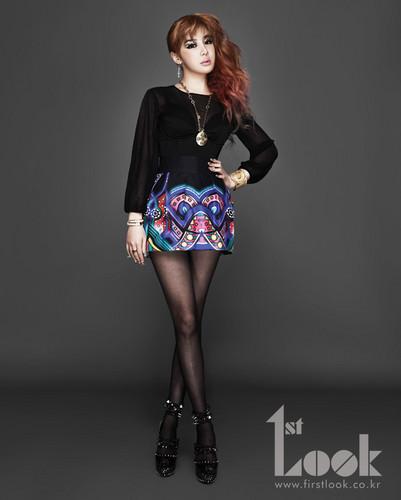 bom 2ne1 1st look mag
