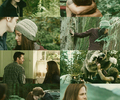 scenes from Eclipse - twilight-series photo