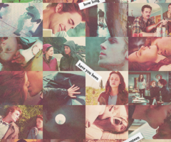scenes from Twilight