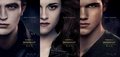 spanish poster part2 - twilight-series photo