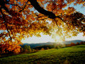 ★ Autumn ☆  - autumn wallpaper