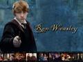 ronald-weasley -  Ronald Weasley wallpaper
