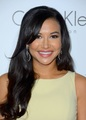 19th Annual Woman In Hollywood Celebration - October 15, 2012 - naya-rivera photo