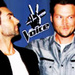 Adam Levine - the-voice icon
