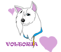 Another Voltoria!!!!!!!!!!!!!!!! :D - disneys-bolt fan art
