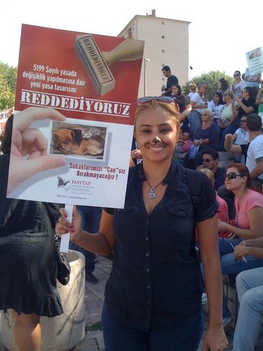 Turkish Animal Law Protest