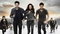 BDPT2 Wallpaper - breaking-dawn-part-2 wallpaper