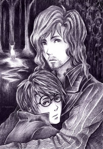 Harry Potter vs Twilight fond d'écran titled Bizarre fan art