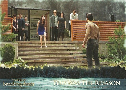 Breaking Dawn Part 2: Trading Cards