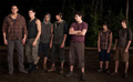 Breaking Dawn part 1 - team-twilight photo