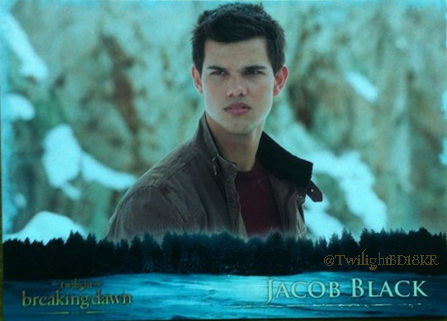 Breaking Dawn part 2 Jacob trading card