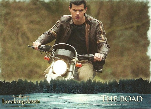 Breaking Dawn part 2 Jacob trading card