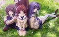 Clannad- Fuuko, Nagisa & Kyou