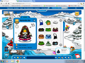 Cool look!XP - club-penguin photo