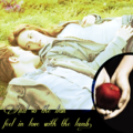 Countdown to Forever-30 Days until BD part 2!!! - twilight-series photo