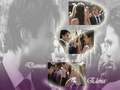 Delena Love forever - damon-and-elena wallpaper