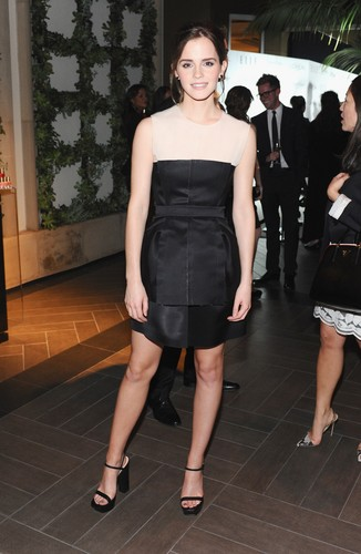emma watson wallpaper probably containing a coquetel dress, tights, and a playsuit, macacão called ELLE's 19th Annual Women In Hollywood Celebration (15.10.2012)