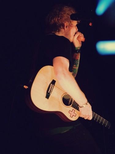Ed at a concert