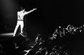 Freddie <3 - freddie-mercury photo