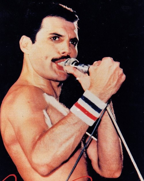 freddie mercury - photo #35